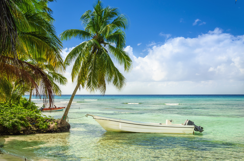 A tropical beach with palm tree in Cuba