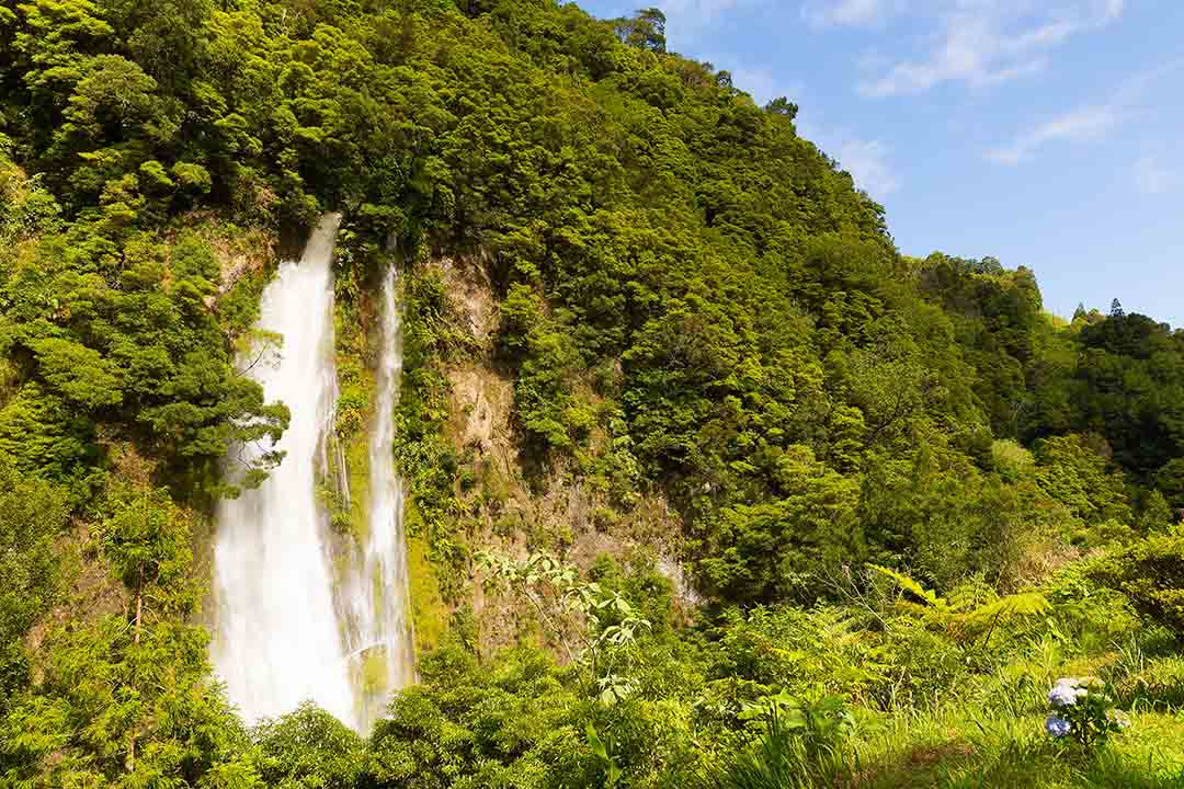 Rain forest on a hill and a scenic waterfall near Furnas