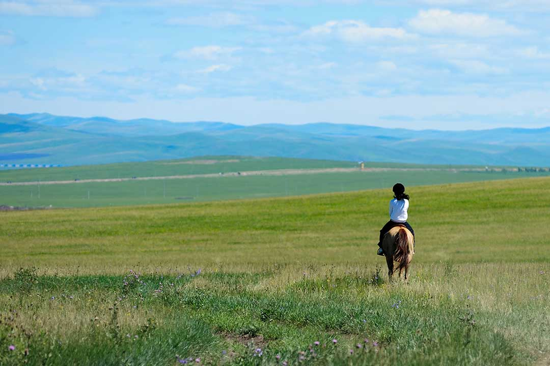 A child is riding a small horse and looking out across vast green plains