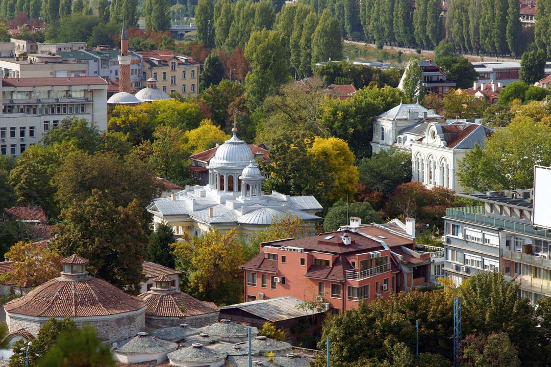 Ornate domes on top of a white building. The skyline of a town pops out from behind green trees