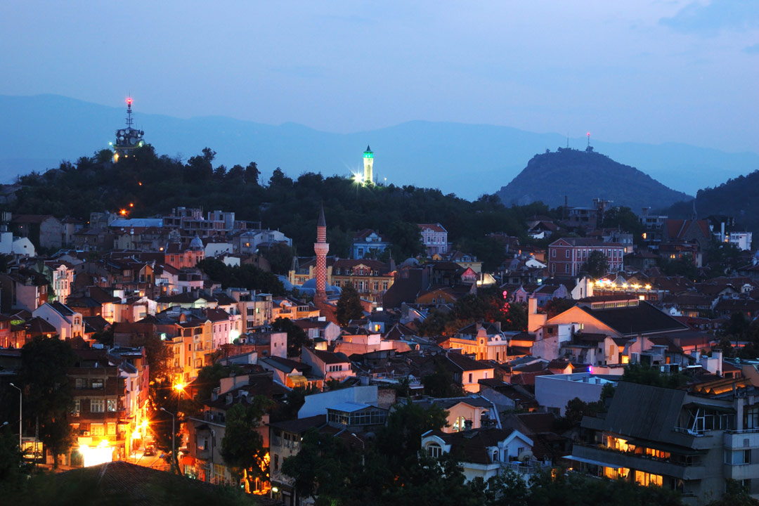 A town's skyline at night. Traditional houses with a backdrop of dark green forest