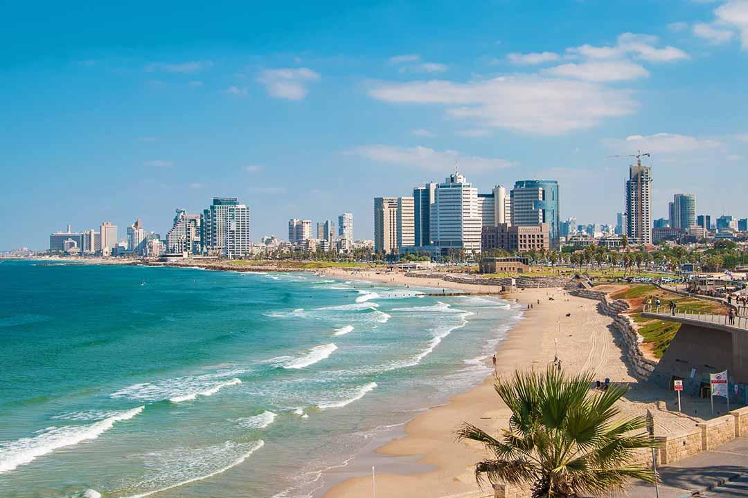 The sky scrapers and palm trees along Tel-Aviv's sandy coastline