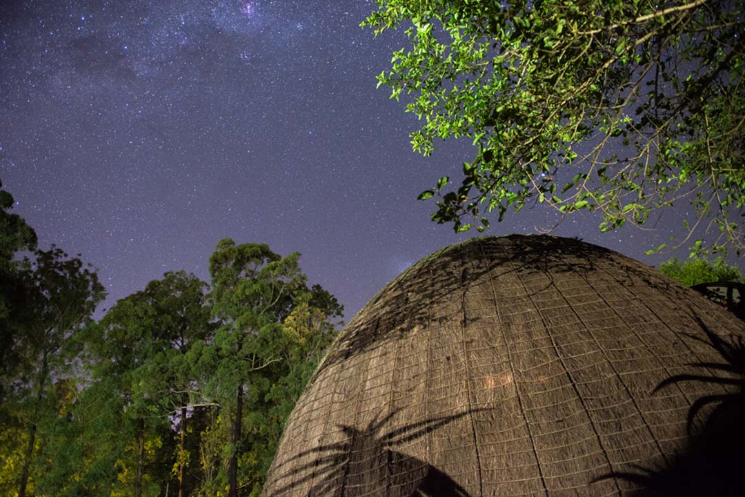 Beehive huts under a bright starlit sky in Mlilwane