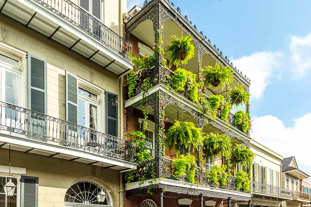 Bright green hanging baskets line an ornate balcony in a traditional town house