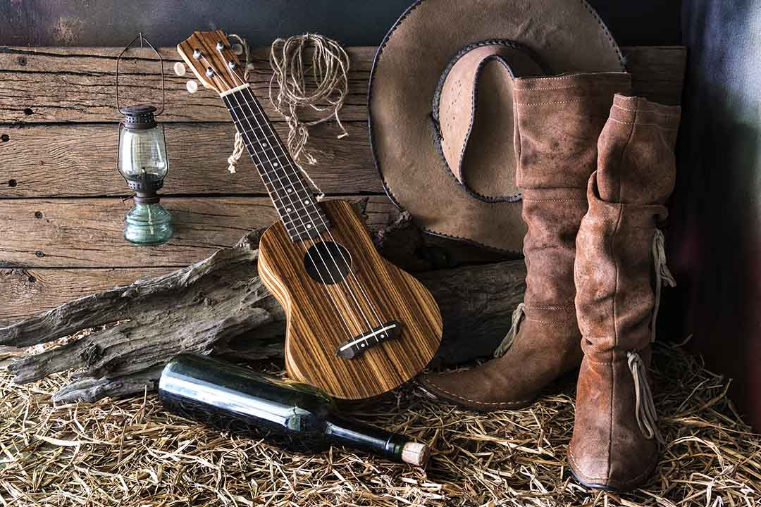 Cowboy boots, a stained wood ukulele and a bottle of alcohol resting on a log