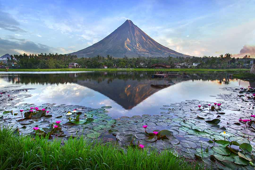 A tall volcano is perfectly reflected in a lake covered in lilypads
