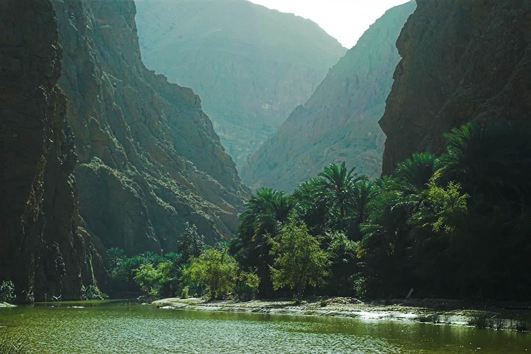 dramtic rocks and verdant greenery in wadi tiwi canyon