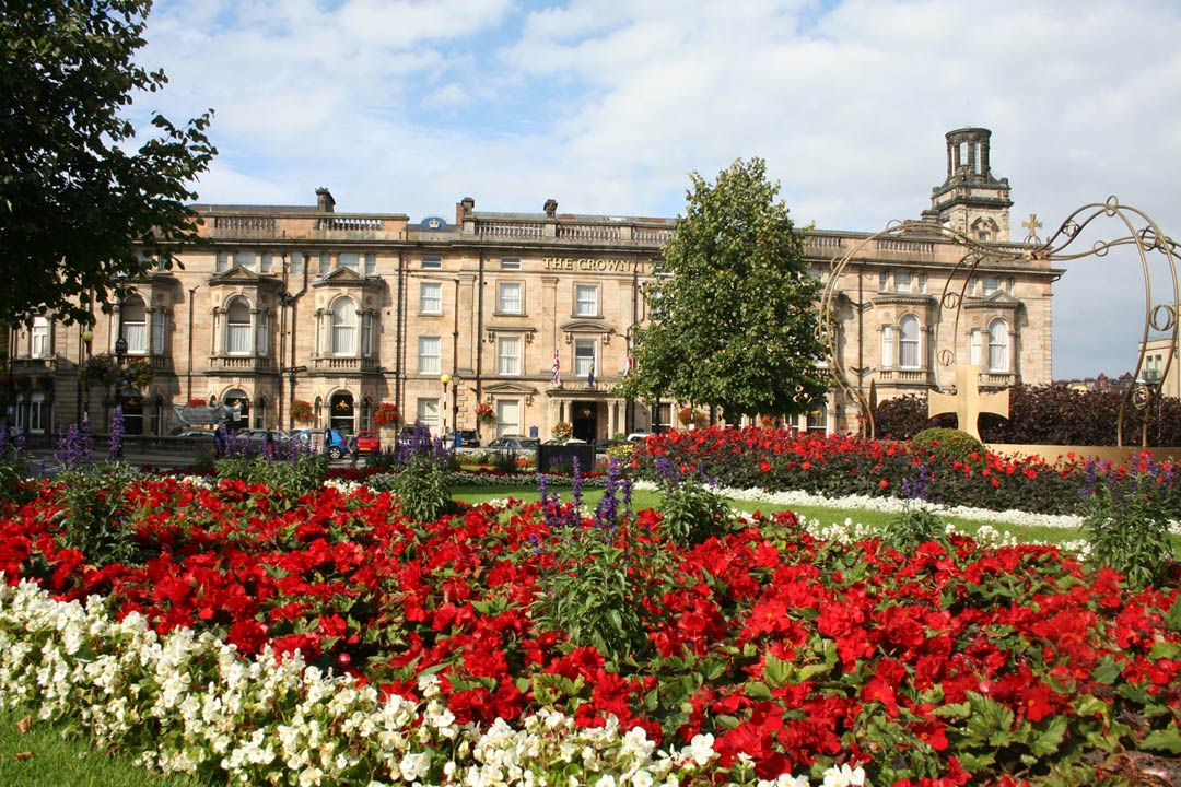 Brightly coloured flowers in front of grand building