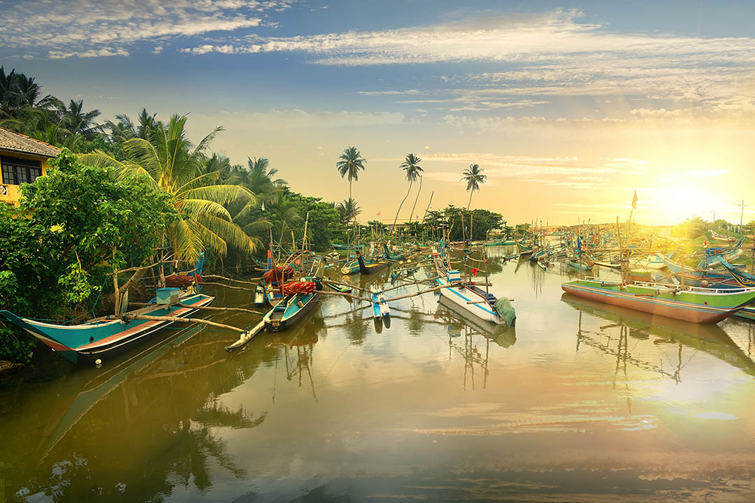 View across a river of fishing boats in in sunset
