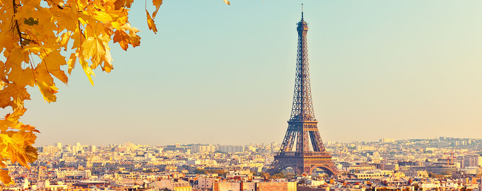 The Eiffel Tower looming over Paris