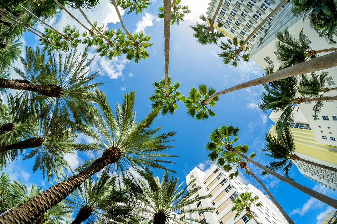 Beautiful Miami Beach fish eye cityscape with art deco architecture and palm trees.