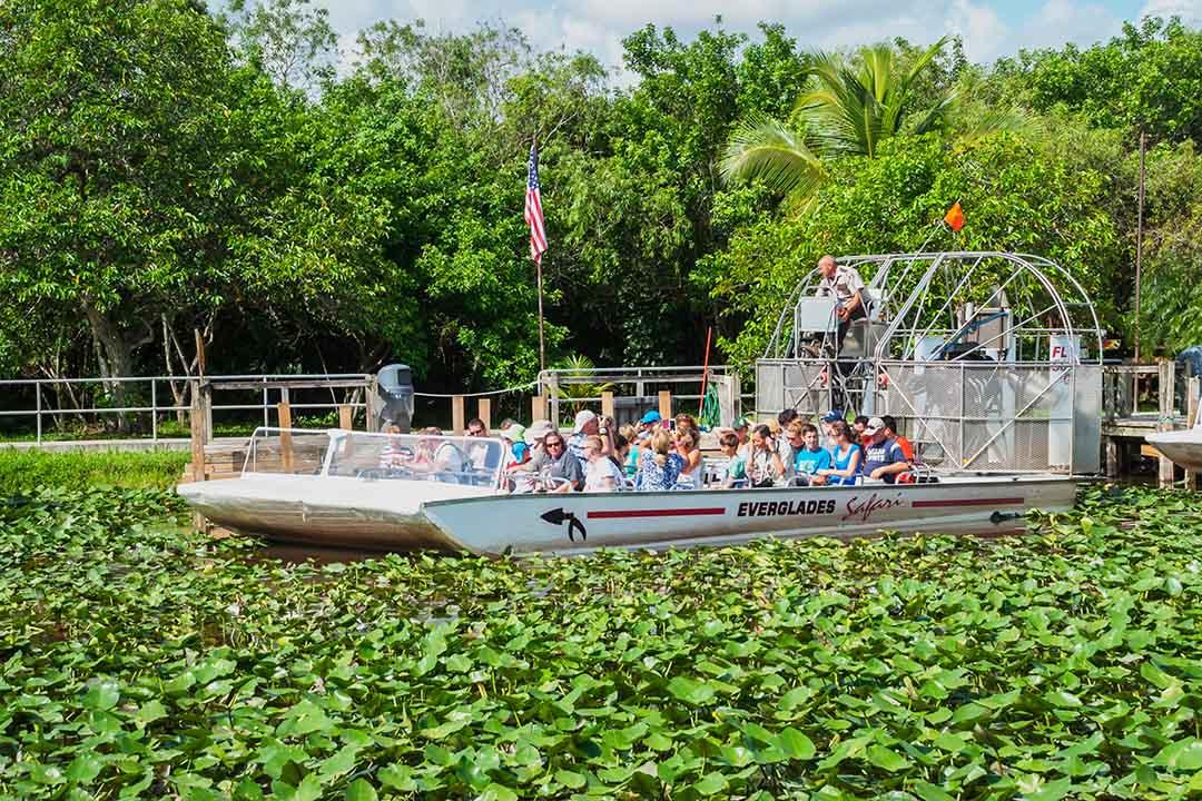 A group exploring the Evergaldes