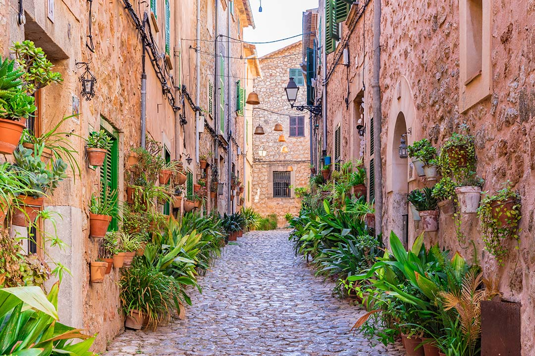 Quaint cobblestone streets with flora