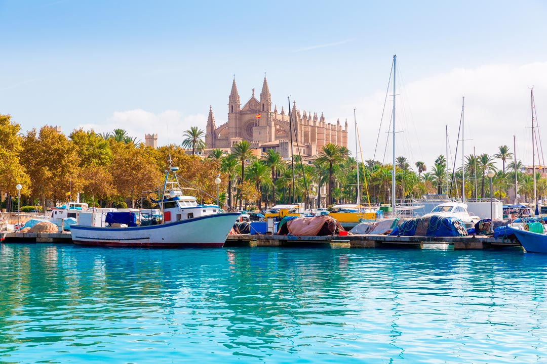 Boats bobbing atop the crystal blue waters, with Palma Cathedral in the distance
