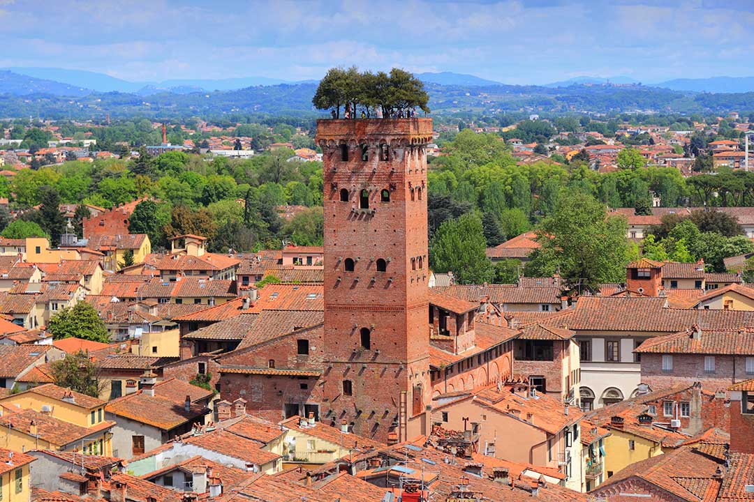 A tall red tower topped by trees in the medieval town of Lucca