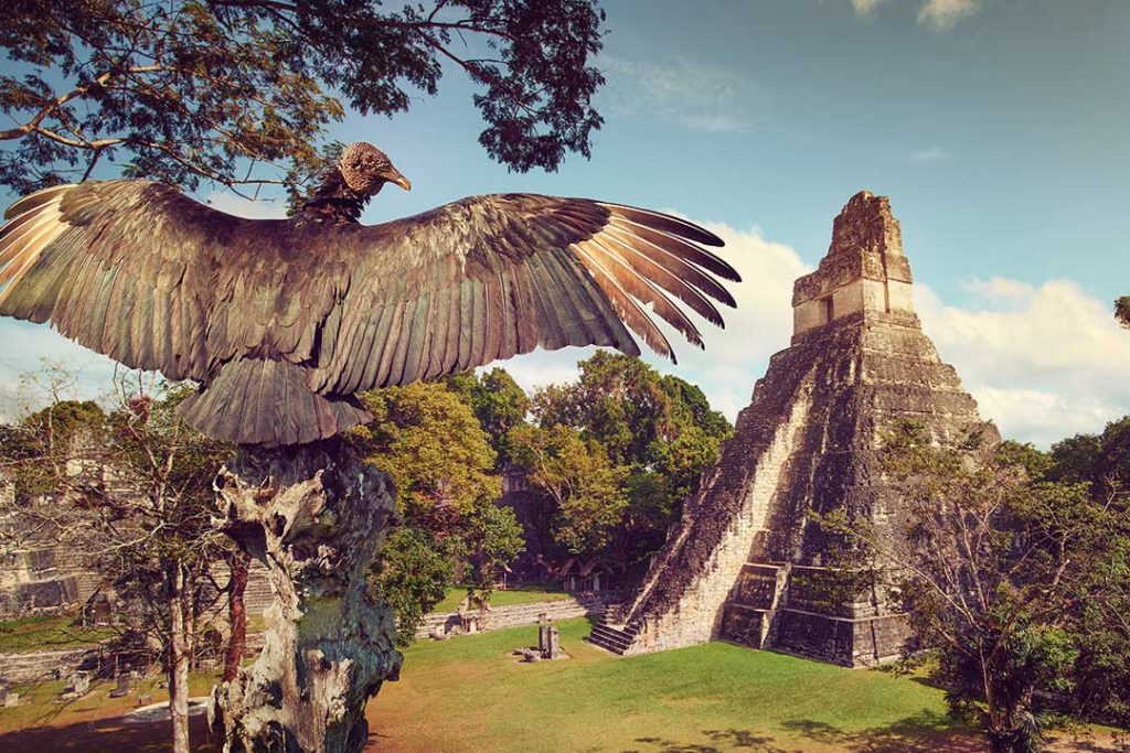 A statue of an eagle stretching its wings over looking a grand, ancient ruin.