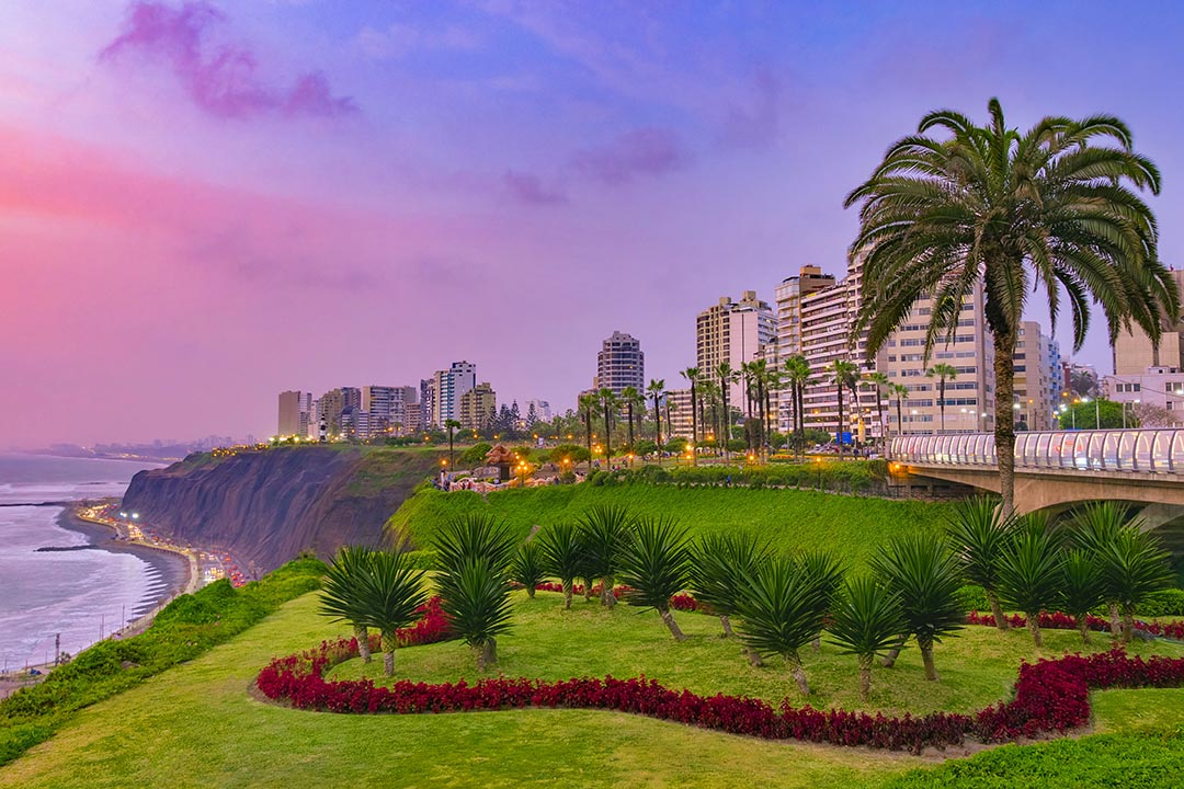 A purple sky at sunset in Miraflores, Lima with a park and red flowers in the foreground