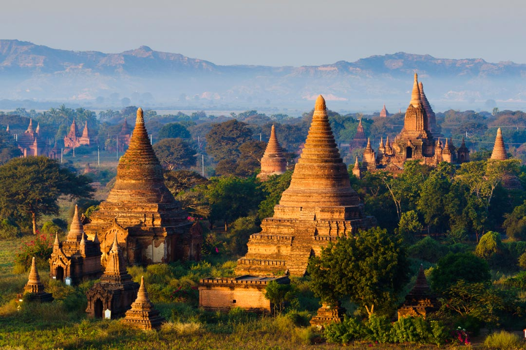 temples among green trees lit up at dawn