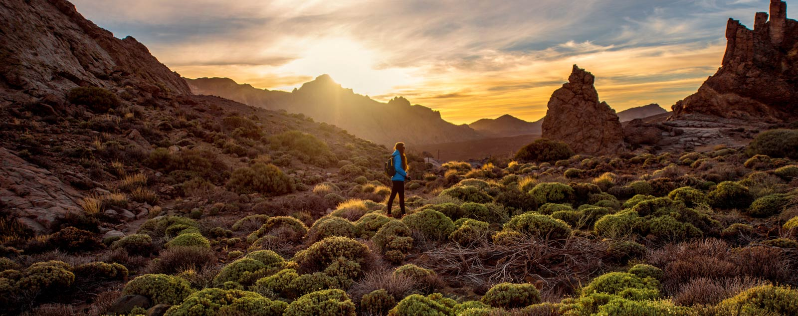 Person in blue jacket stood in tufts of green flora at the bottom of a valley in Tenerife. Sun is setting behind the brown valley rocks.