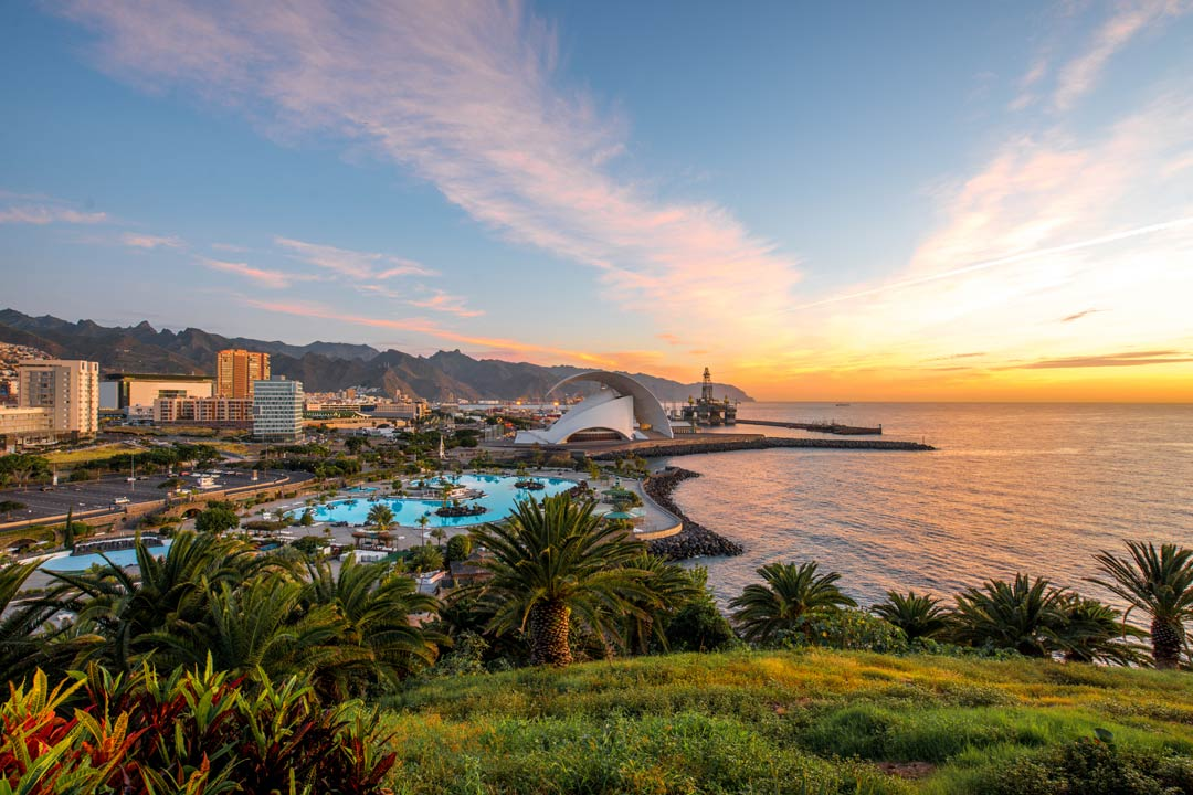 A view of Tenerife's coastline with green landscape in the foreground and the ocean and swimming pool surrounded by buildings in the background.