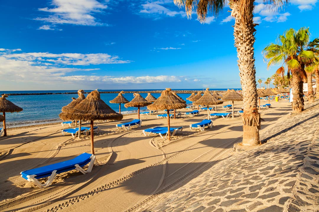 A white sand beach with palm trees and straw umbrellas for shade.