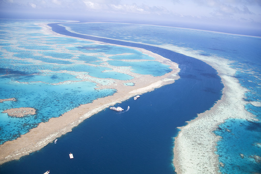 A bright blue channel of water between banks of sand and turquoise pools of water in the Great Barrier Reef.
