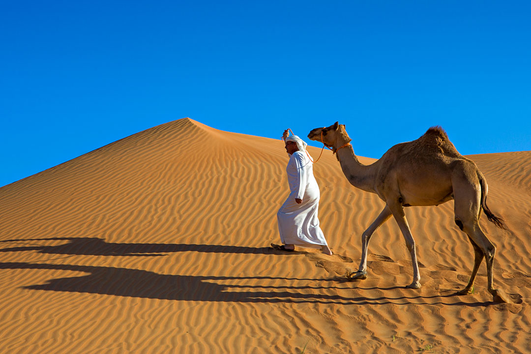 Man dressed in white robes leading a camel across sand dunes in the desert.