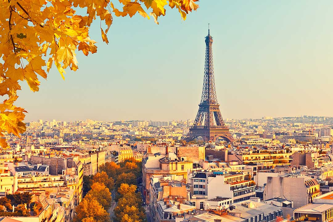 A view of Paris with the Eiffel Tower in the distance and autumnul leaves on the trees on the streets.