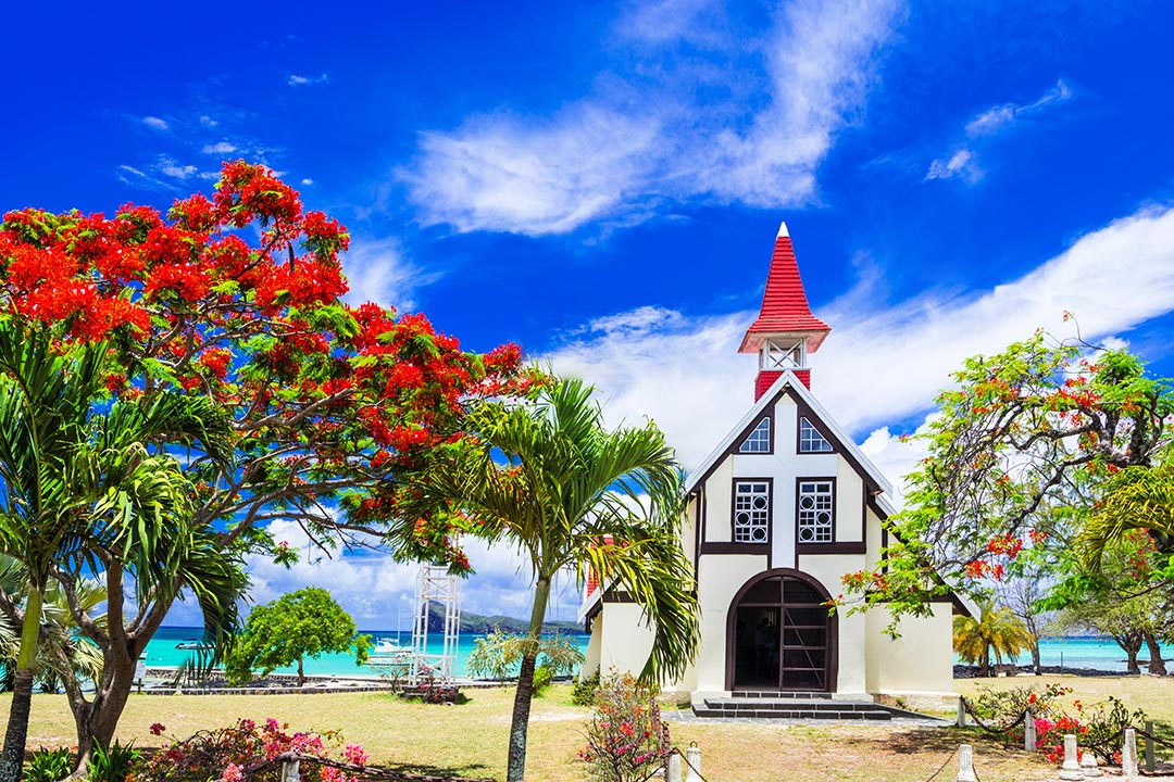 Scenery of a traditional white church with red spire and black details with green trees with red flowers against a blue sky.