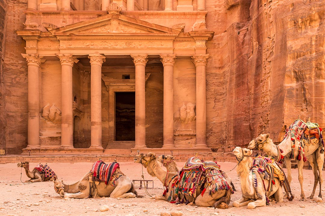Camels resting in front of an ancient monument carved into red stone in Petra, Jordan