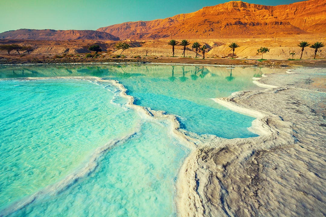 The salty shore of the blue Dead Sea with orange sand and palm trees in the back ground.