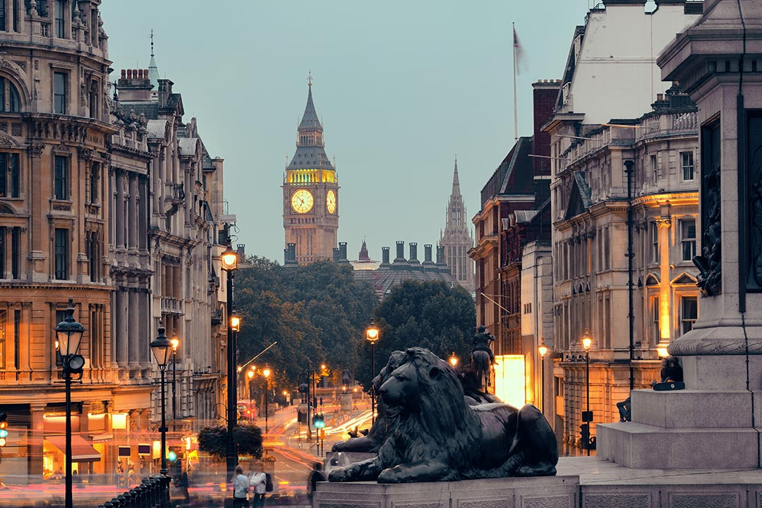 A view of Trafalgar Square at dusk. A statue of a lion is in the foreground and the picture leads down a road to Big Ben in the background.