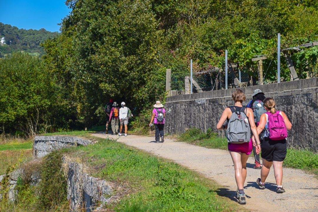 Pilgrims walking along a path