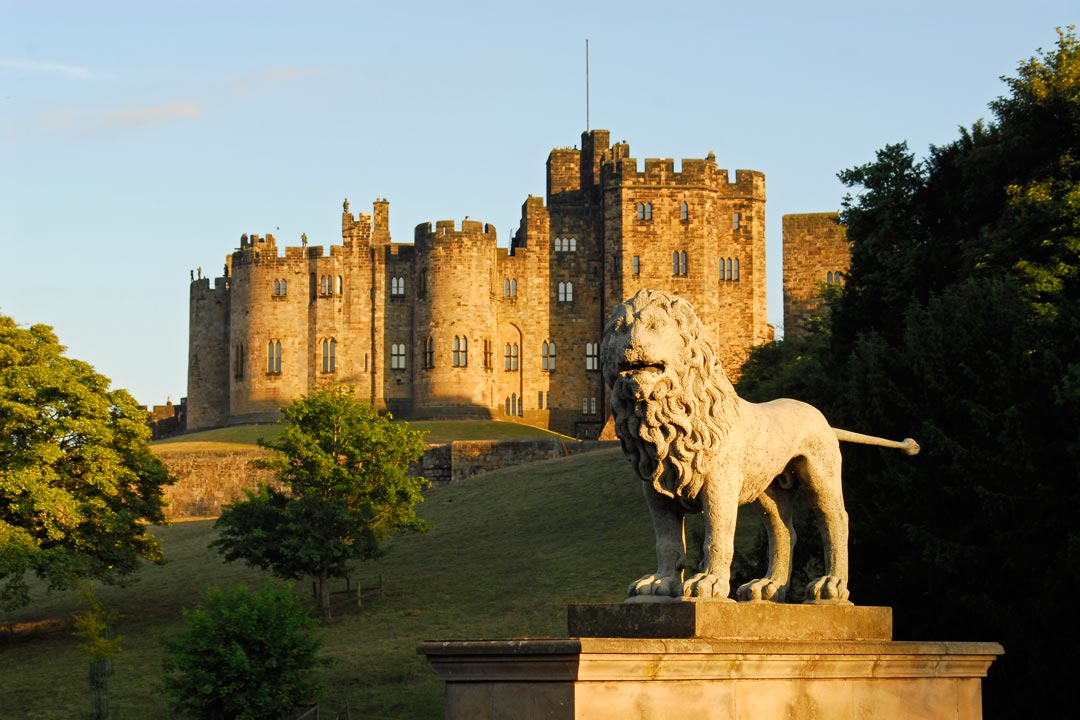 A statue of a lion stands proud in front of Alnwick Castle