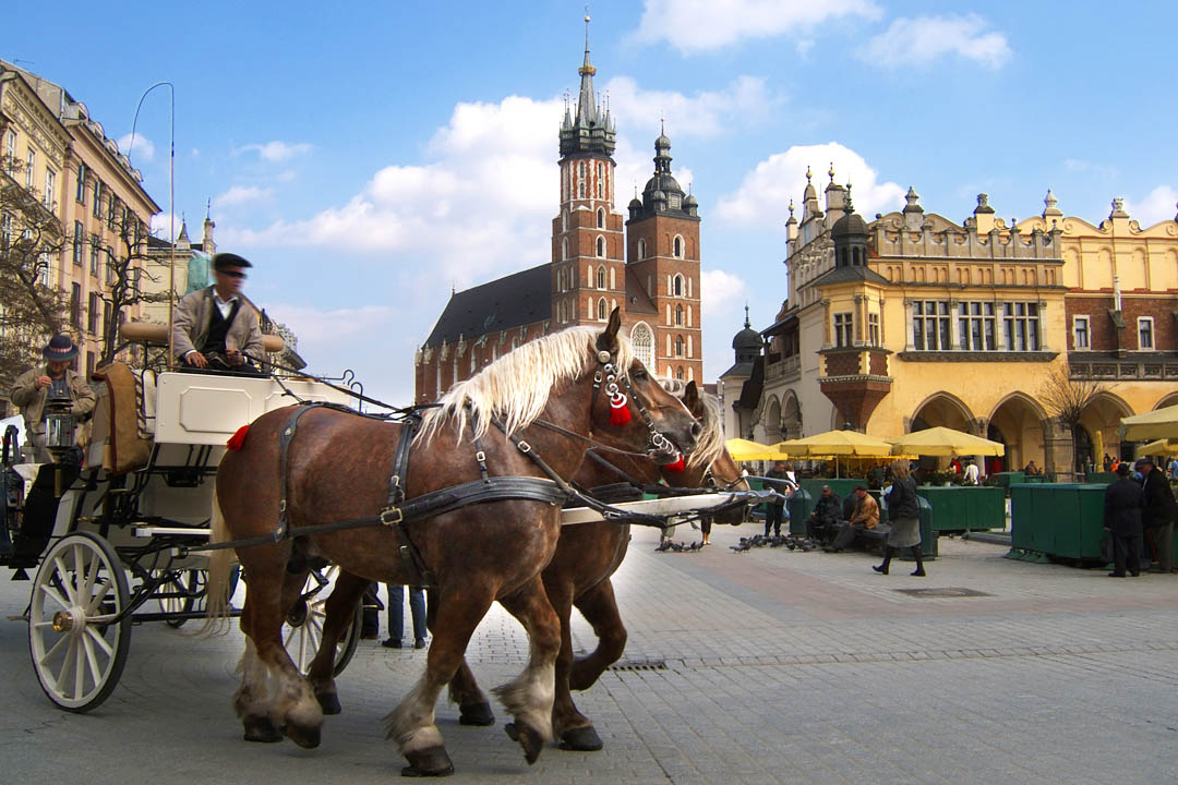 A horse driven carriage driving through medieval Krakow buildings.