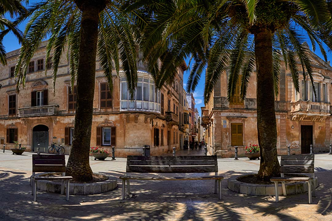 Benches underneath palm trees in the old capital of Ciutadella